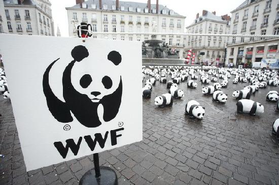 WWF 2